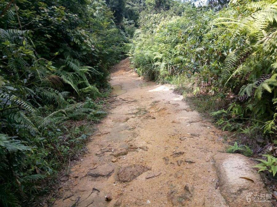 溯溪徒步3.jpg